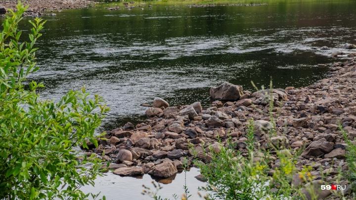 Причина — нерест: в Пермском крае введен запрет на ловлю рыбы