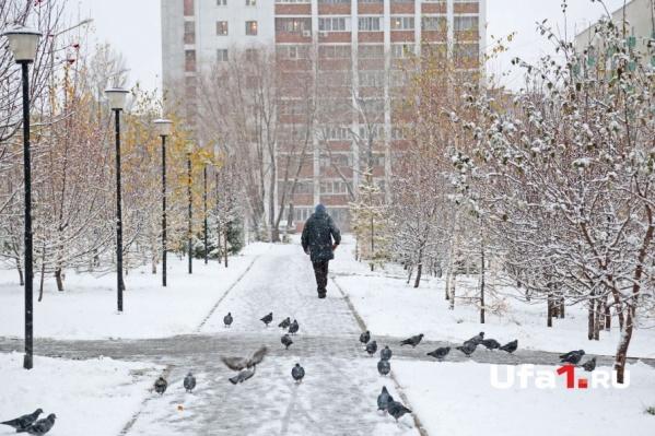 Зимнее утро вдохновило уфимцев