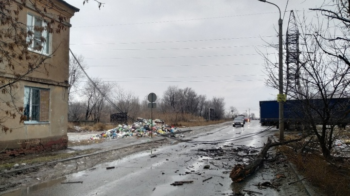 Виноват закон: волгоградские коммунальщики под Новый год оставили горожан тонуть в мусоре