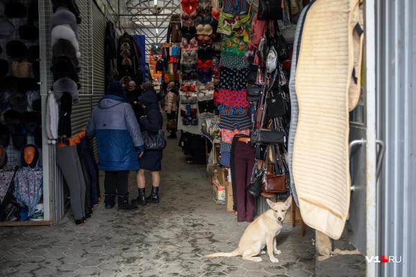 Торговцев с рынка перевезут в благоустроенный торговый центр