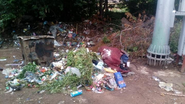 Сделаем Уфу чище: коммунальщики разобрали стихийную свалку в центре города