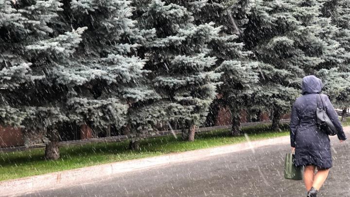 Не ждали? 17 кадров припорошенной снегом Тюмени