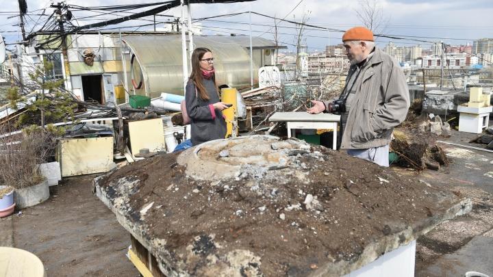 «Говорили, корни прорастут в квартиры»: репортаж из 9-этажки, где разрушили 18-летний сад на крыше