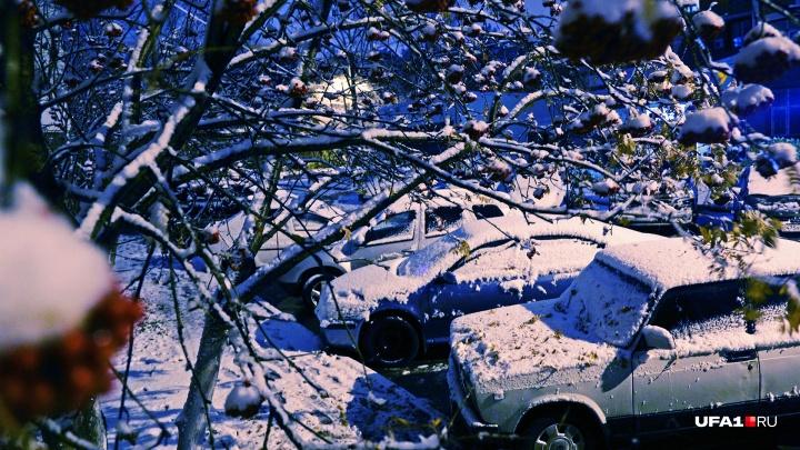 Порывистый ветер и снежные заносы: какая погода ждет жителей Башкирии в воскресенье