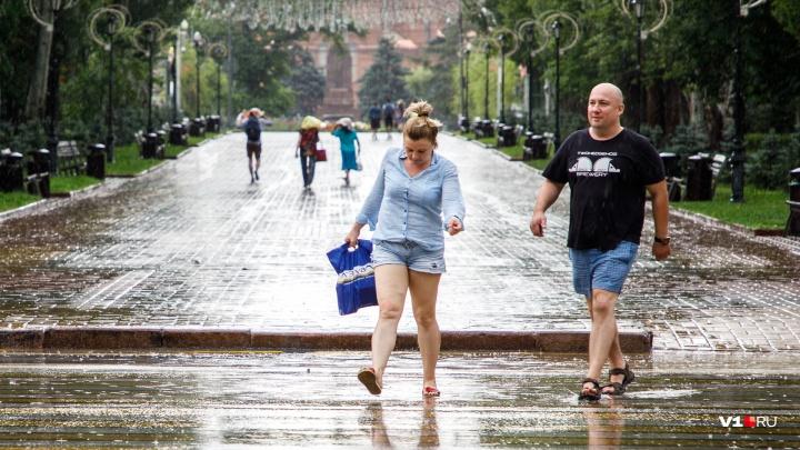 Зарядит на все выходные: дожди и мощный ветер готовят новый удар по Волгоградской области