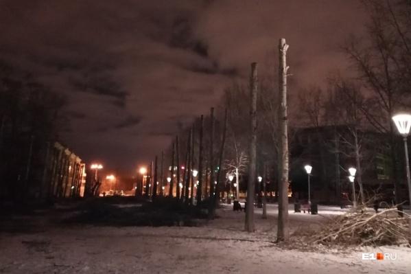 Деревья обрезали на участке от улицы Машиностроителей до Красных Партизан