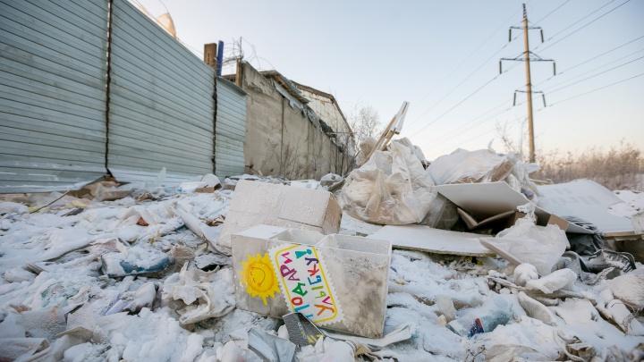 Депутаты спорят о необходимости принятия новых штрафов за выброс мусора в неположенных местах