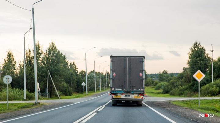 Лазерные датчики и защитное ограждение: дорожники придумали, как уменьшить число аварий с лосями