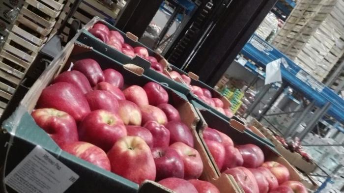 Найденные на рынке польские яблоки