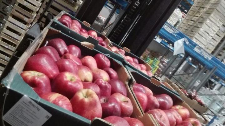 На крупном новосибирском рынке нашли тонну запрещённых яблок