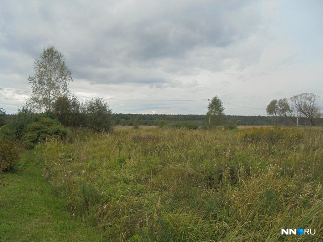 Депутат изНижегородской области присвоил земельный участок стоимостью практически 1 млн. руб.