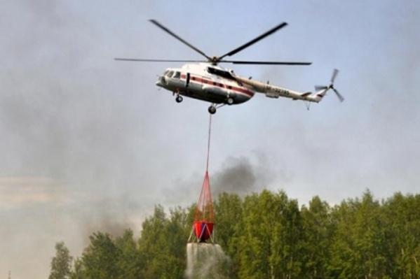 В лесу идет масштабная борьба с огнем