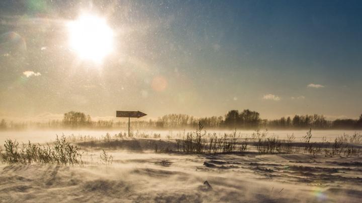 После мартовских праздников в Новосибирскую область вернутся суровые морозы