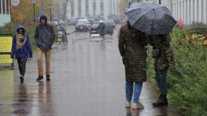 Местами будет сдувать: в Архангельской области обещают сильный ветер и снег