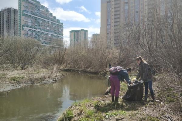 Сегодня в Дзержинском районе проходит экологический субботник
