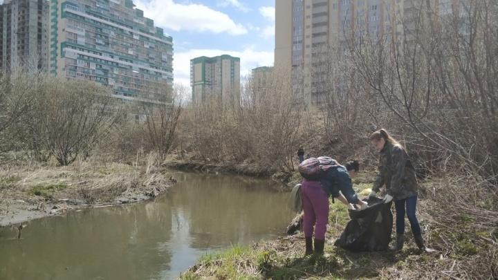 Десятки новосибирцев с мешками вышли собирать мусор с берега Каменки