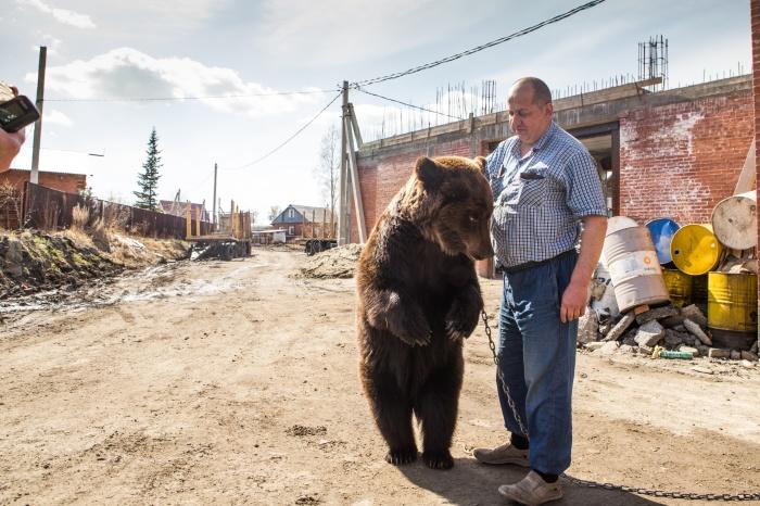 Медведица живёт в Каменке уже около 7 лет