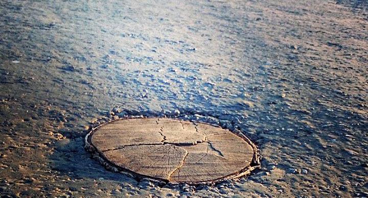 Сидит как влитой: житель Новосибирской области отремонтировал дорогу пнём