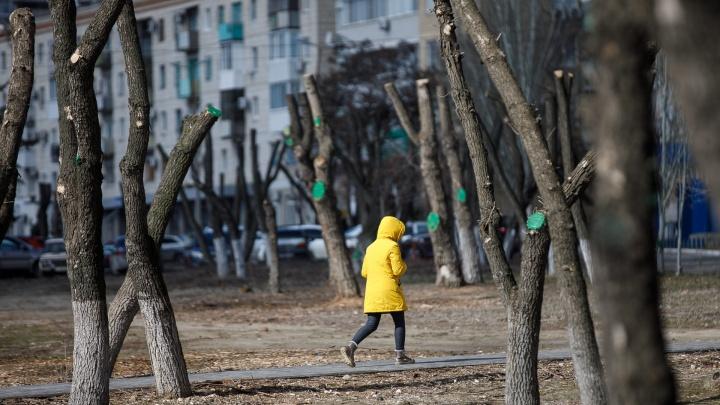 Сыро и серо: Волгоградскую область в начале недели окутает дождями и сильным ветром
