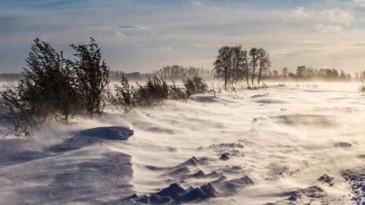 Спасатели помогли трём новосибирцам, оказавшимся в сломанной и заметённой снегом машине