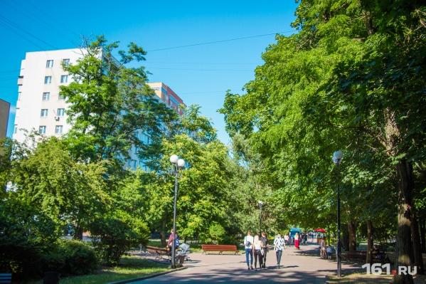 По мнению дендролога Козловского, в центре города много «опасных деревьев»