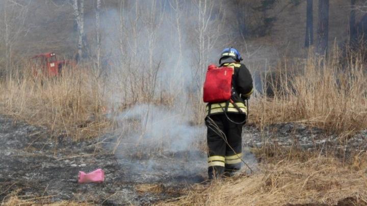 В Тобольском районе горит четыре гектара леса