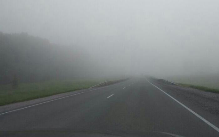 Туман на трассе в НСО