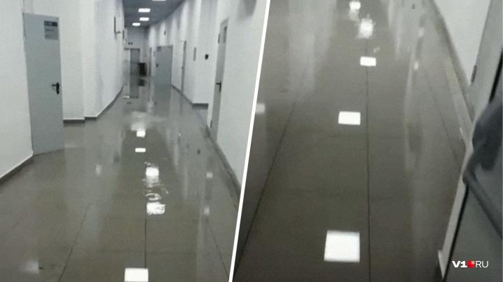 «Переполнилась канализация»: затопление «Волгоград Арены» объяснили ремонтом гидроизоляции