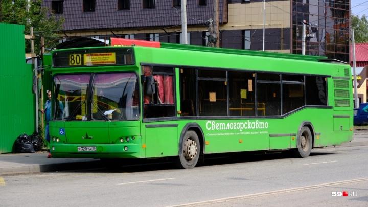 В пермских автобусах № 80 предупреждают о сбоях в расписании и долгих перерывах между рейсами