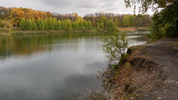 Золотая осень в сером Автозаводе: 10 атмосферных снимков с Земснаряда после дождя