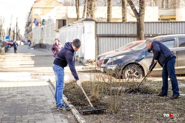 Сегодня в Ярославле был общегородской субботник