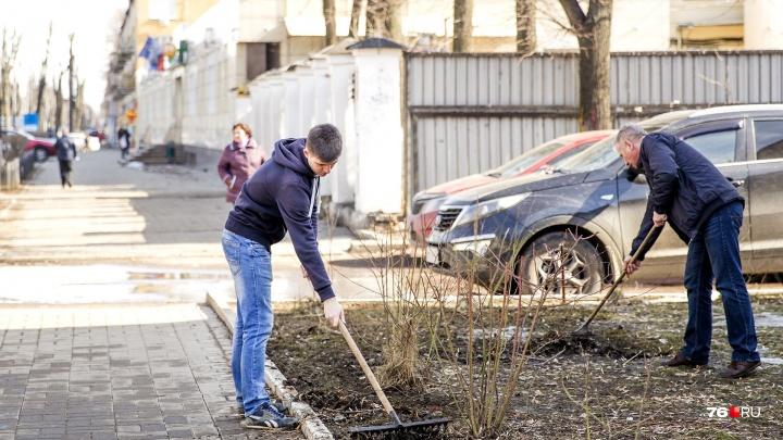 Ярославцев заманивают на субботники дорогими подарками