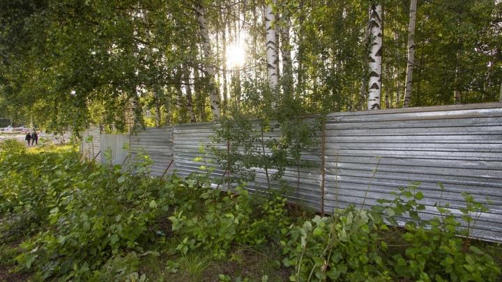 «Демонтировать забор»: мэр Рыбинска пообещал найти альтернативные варианты места для стройки часовни