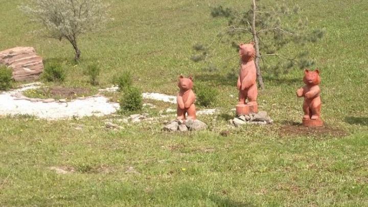 В Уфе поселилась семья медведей