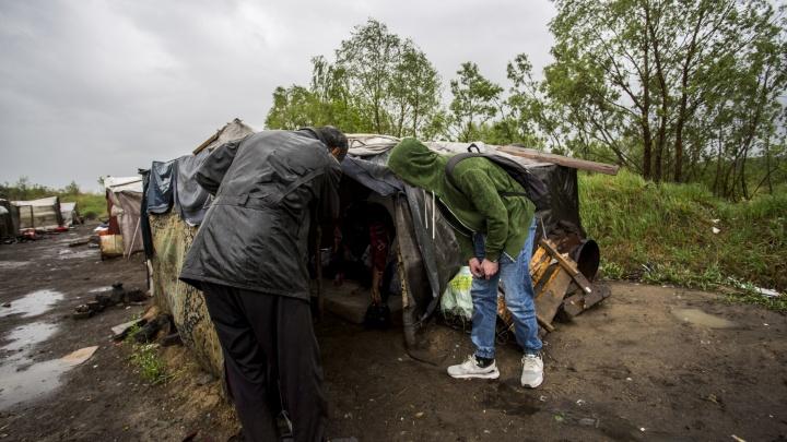 Силовики нагрянули в лагерь мигрантов под Новосибирском с новой проверкой