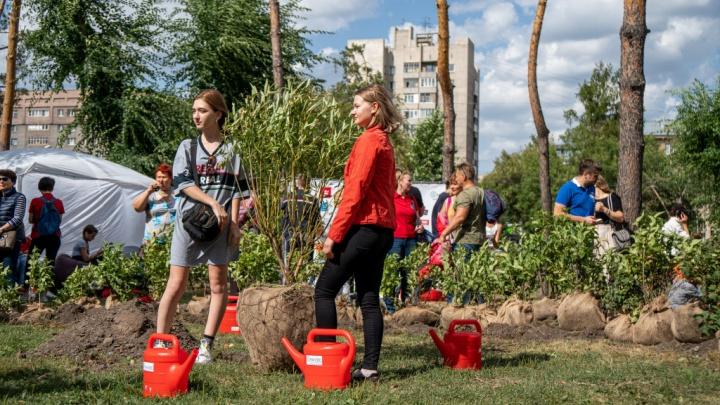 Фото: новосибирцы высадили сотню новых деревьев в сквере за НОВАТом