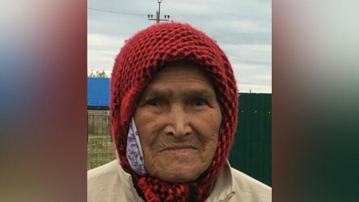 Волонтеры уже четвертый день ищут в Башкирии пропавшую 81-летнюю бабушку