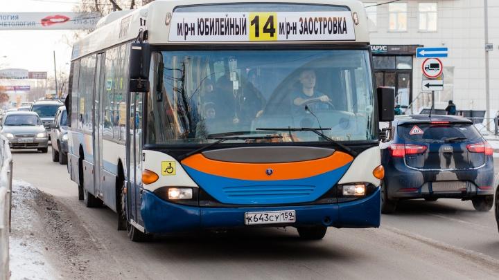 В новой маршрутной сети Перми автобусы №14 и 68 останутся без изменений