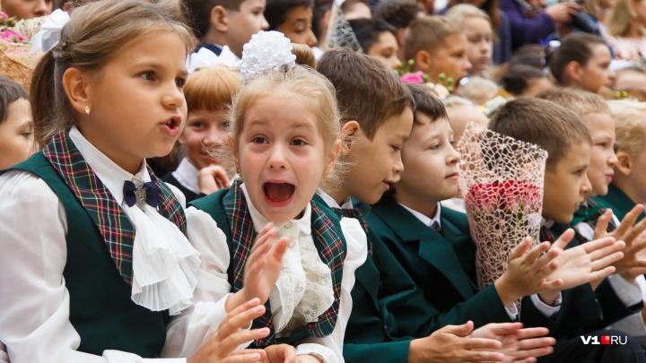 «Победили в школьном конкурсе»: волгоградские учителя отдали 40 тысяч рублей лжеинспекторам ГАИ