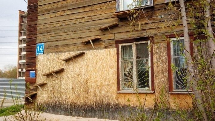 Фото: новосибирцы приделали к дому «котопровод» со второго этажа