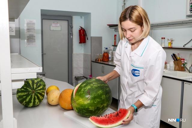 Диета С Арбузами И Дынями В. Диета на арбузе и дыне: как сбросить лишний вес