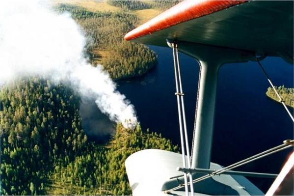 Минобороны создает авиагруппировку для тушения лесных пожаров в Сибири