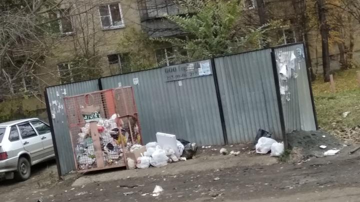 «Знаем о проблемах в двух районах»: из челябинских дворов исчезли мусорные баки