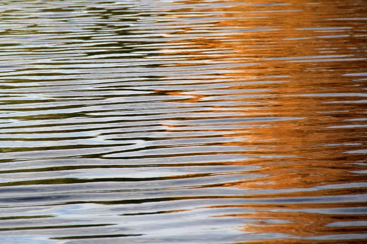 Даже по отражению в воде можно угадать время года