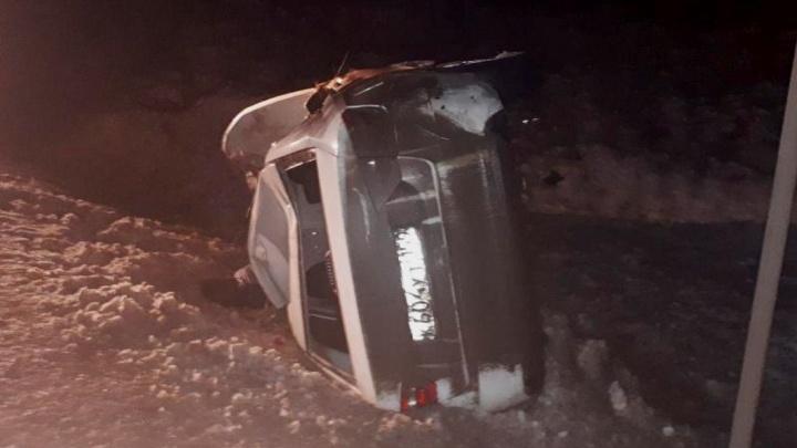 На трассе в Прикамье погибли водитель и двое пешеходов