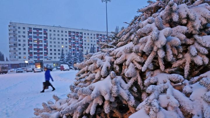 Аномальная зима в Башкирии: рассказываем, сколько еще дней будет тепло