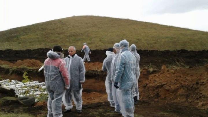 В четвертом селе Башкирии обнаружили вирус ящура