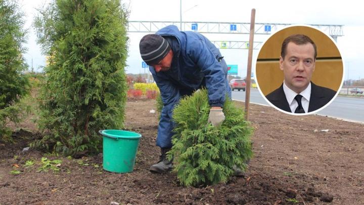 Медведев даст Самарской области деньги на благоустройство и фермеров