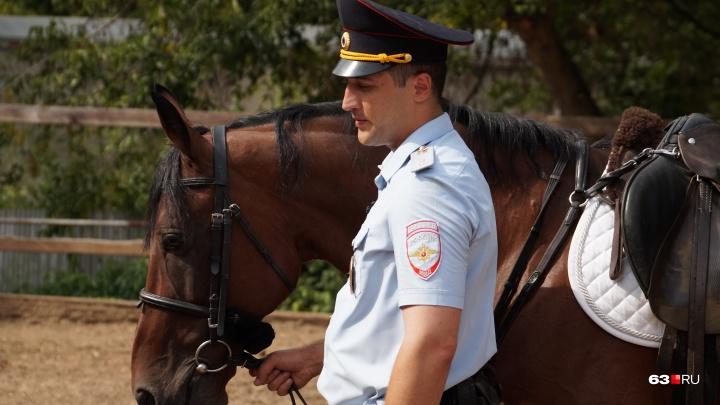 Буденновской породы: самарская полиция возьмёт в прокатплеменных лошадей