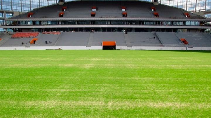 Травка взошла: на Центральном стадионе зазеленело футбольное поле